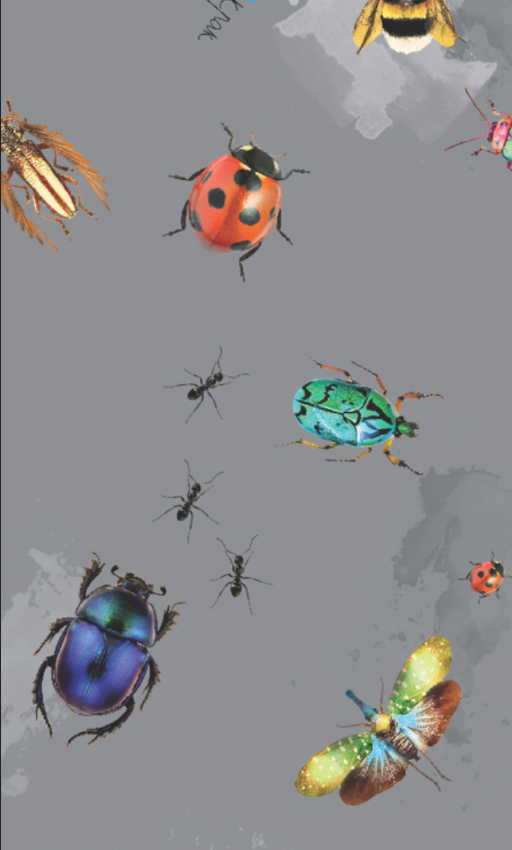 M (wheel diameter 30cm)